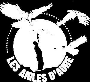 Logo blanc des Aigles d'Aure